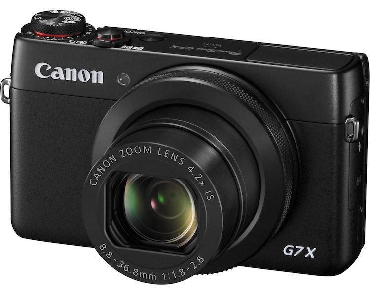 A Canon-brand point and shoot.